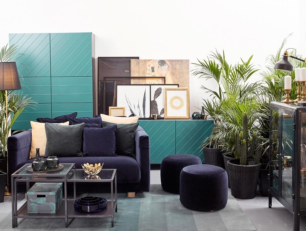 Полуночные тропики в вашей гостиной